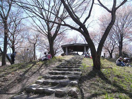 吉野の桜2011@吉野山-16