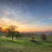 Greenwich Park by TheFella