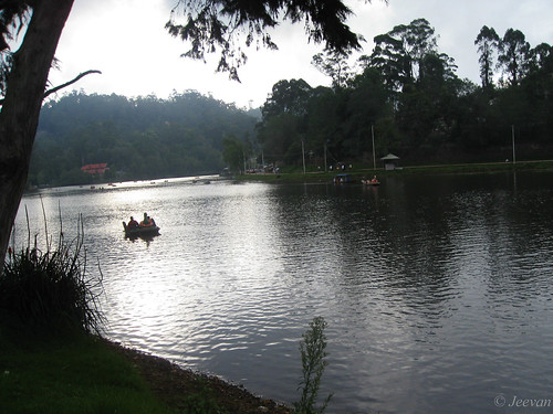 Kodai lake - quiet pleasant