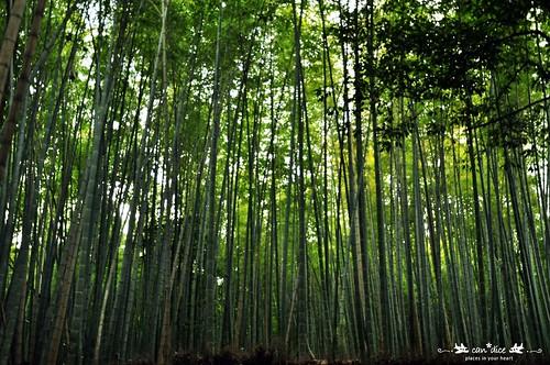 Arashiyama 嵐山 - 04