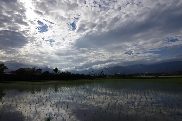 20120303 太麻里、初鹿、池上