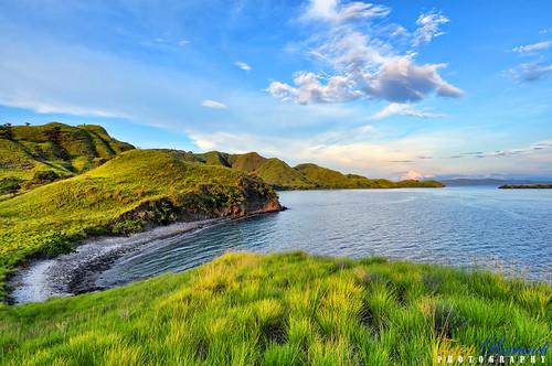 flores indonesia geotagged nikkor ntt teeje d5000 eastnusatenggara pinkisland geo:lat=860936639650306 geo:lon=11952475484655758