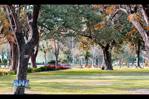 Marvelous! - Lahore