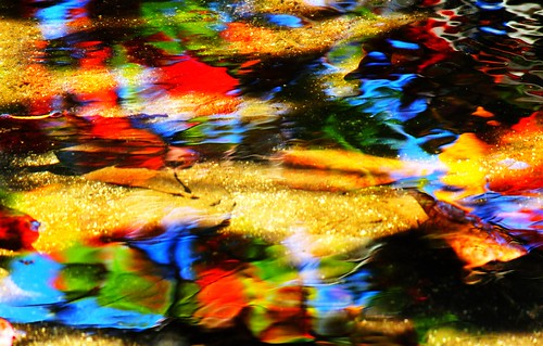 Water artistry: Colourful leaves in water