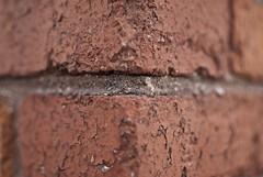 Corner Brick