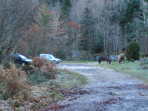 Cabane de Cézy 013