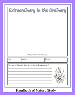 Extraordinary in the Ordinary notebook page button