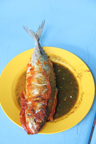 Malaysian Fish
