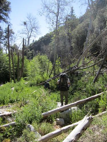 Buck Creek: Day 2