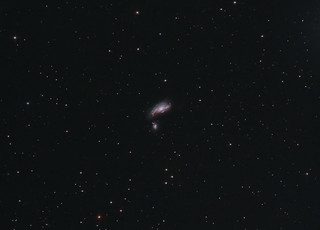 NGC4490 The Cocoon galaxy