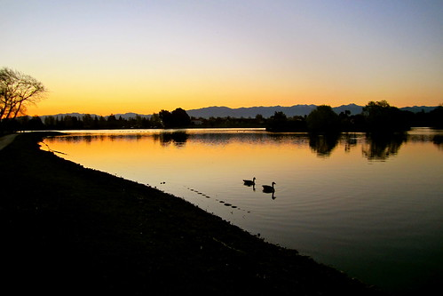 light sunset sky lake water reflections landscape dusk swans henley masterton