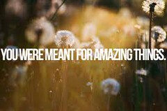 you were meant for amazing things