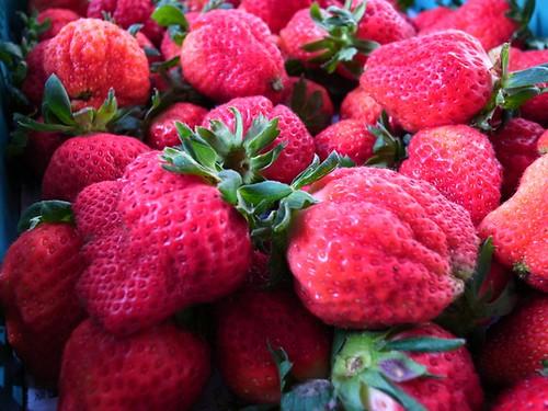 1號大草莓