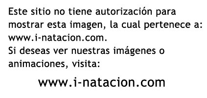 i-natacion.com