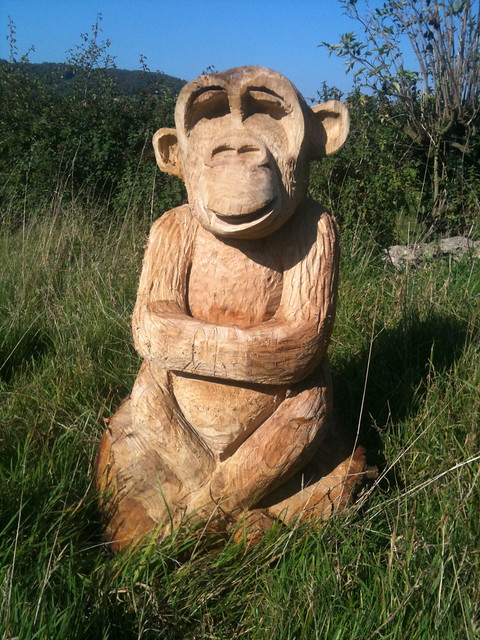 Monkey chainsaw carving flickr photo sharing