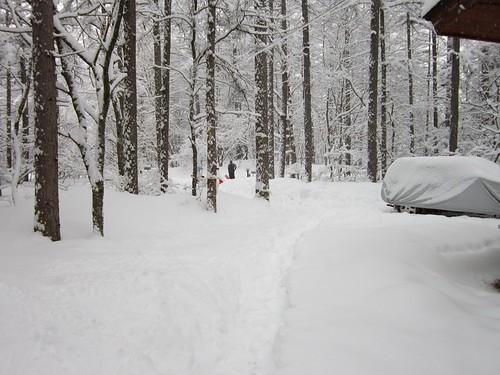 庭の積雪/3月の大雪 2012年3月10日8:29 by Poran111
