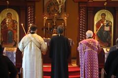 presbyter, deacon, clergy, religion, priest, priesthood, person, bishop, patriarch, ceremony,