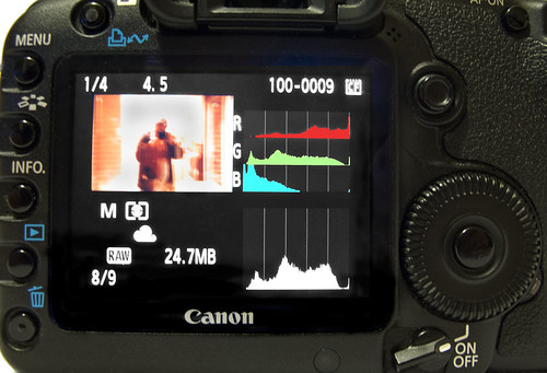 Histogram functions showing on the screen of a Canon 5D MkII