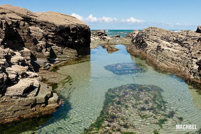 Piscinas naturales flickr photo sharing for Plastico para piscinas naturales