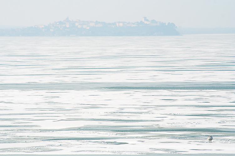 trasimeno ghiacciato 2
