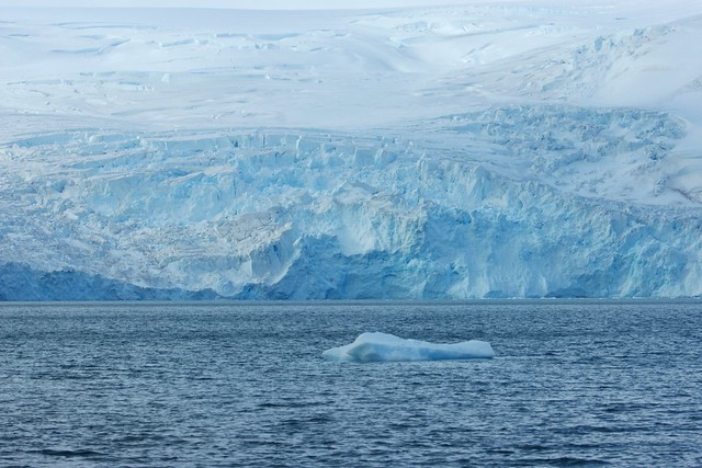 Antarctic - King George Island