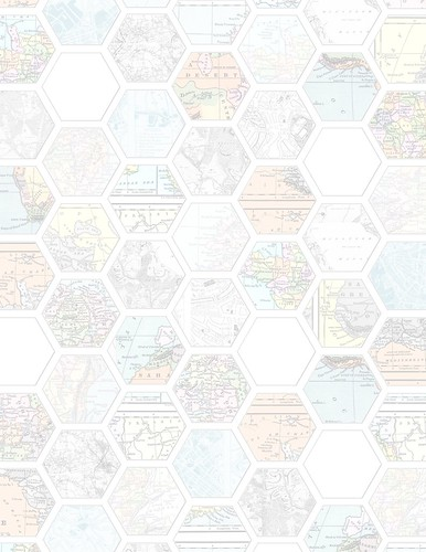 PNG_Map_hexagon_LIGHT_standard_350dpi_melstampz