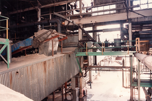 Bagasse Conveyor ... 5th Oct 1994