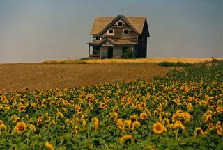 Abandoned farmhouse, easternmost Montana