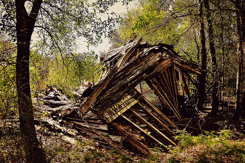 abandoned lakecounty groveland oldflorida citrusfarm
