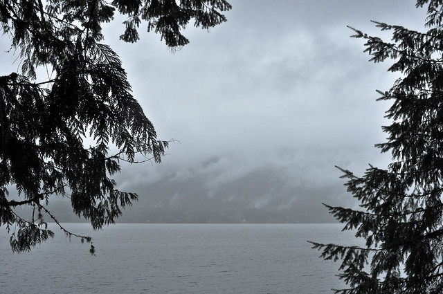 Drizzly morning at Lake Quinault