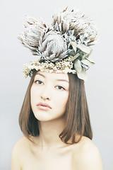 mys_20111222_04