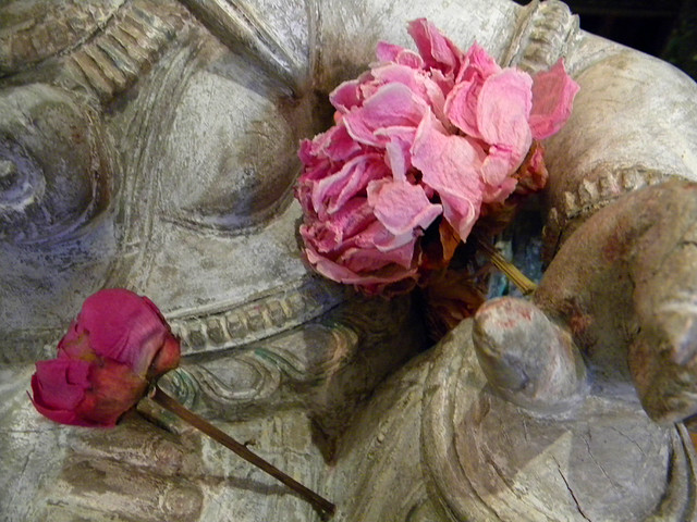 peonies on Ganesh