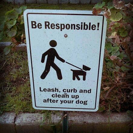 Be Responsible! by Jodi K.