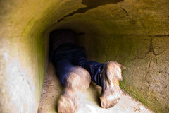 Entrée dans le fort par cette mini ouverture en mode commando ^^