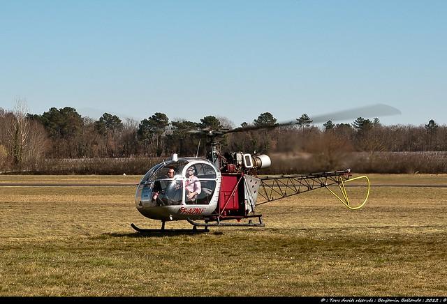 Alouette  II : Libourne : Nikon D700 : France : Mars 2012