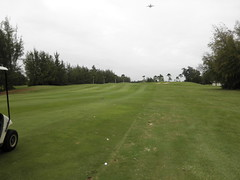 Hawaii Prince Golf Club 052