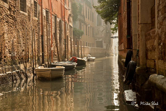Venecie