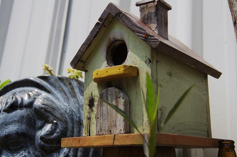 我上課的小木屋~