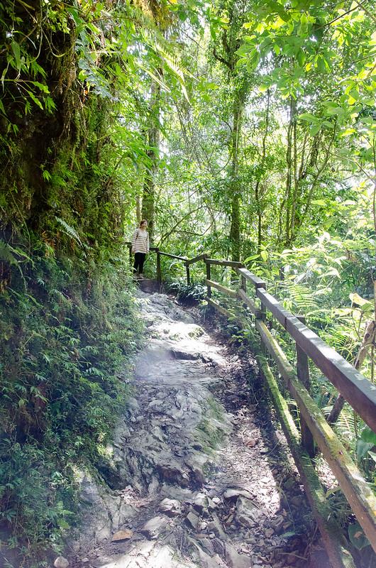 Experience the beginning of Mount Kinabalu's climbing at Kinabalu Park, Sabah