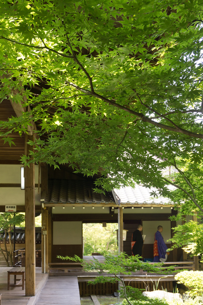 Kyoto in green