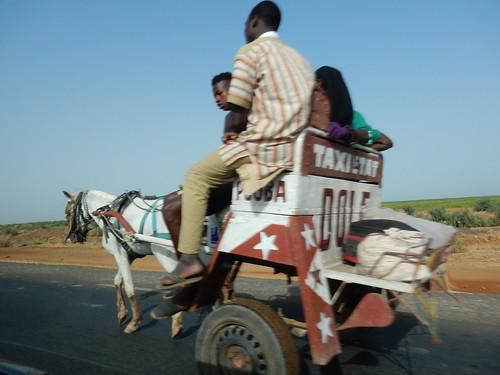 road trip horse nikon taxi transport roadtrip coolpix sénégal geoafrica nikoncoolpixs9900 s9900