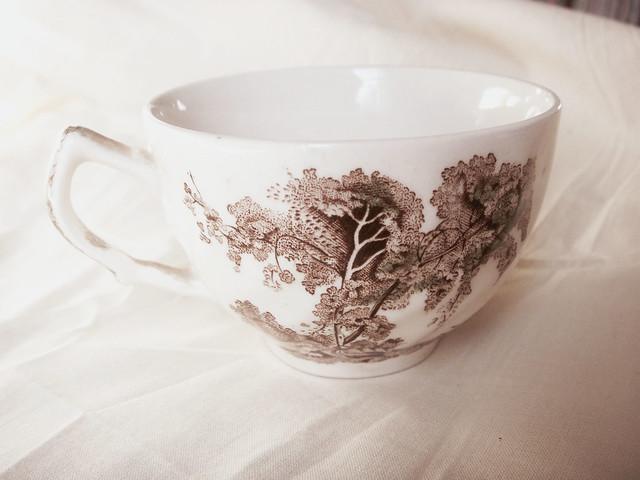 Wonderland teacup