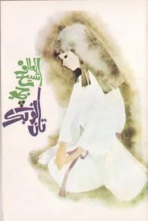 Altaf Shaikh's Travel Books 22a ....   الطاف شيخ جي نوٽ بڪ تان