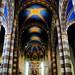 Illuminazione Duomo di Alba