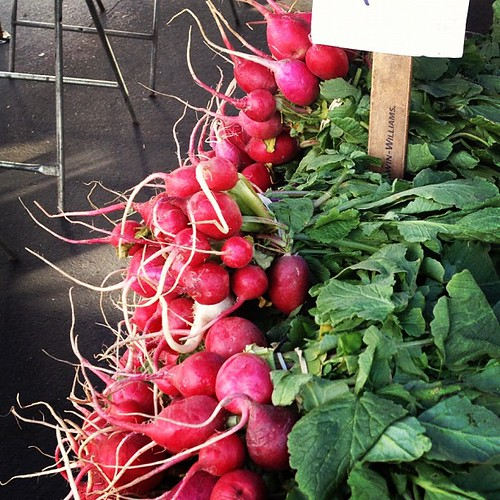 Radishes. #farmersmarket