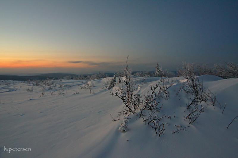 That-arctic-feel