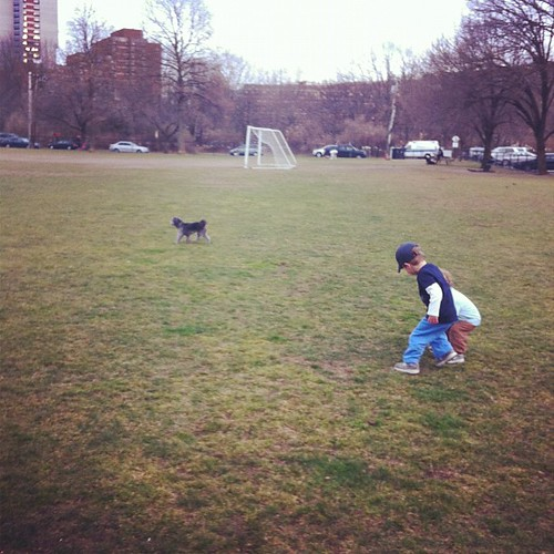 At the dog park with our 'cousin' Rico