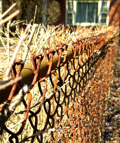 rust bokeh chainlinkfence hff canona1000is fencefriday rustychainlinks fencedfriday