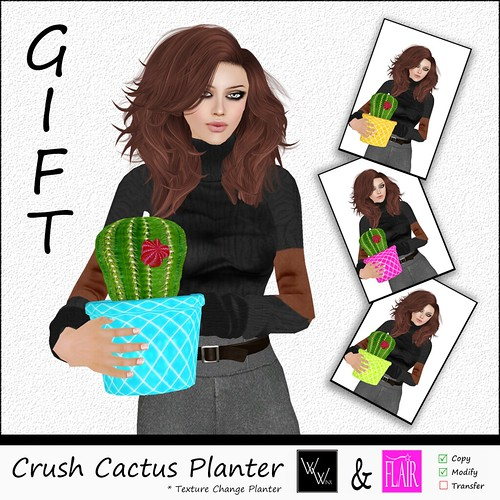 W. Winx & Flair Crush Planter AD
