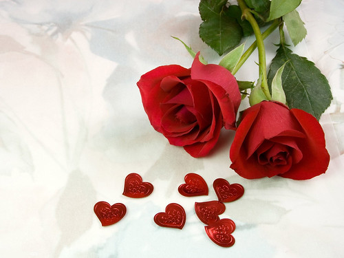 6855711201 e0a8dda7c2 Celebrate Valentines Day with Symbol of Love   The RED ROSES